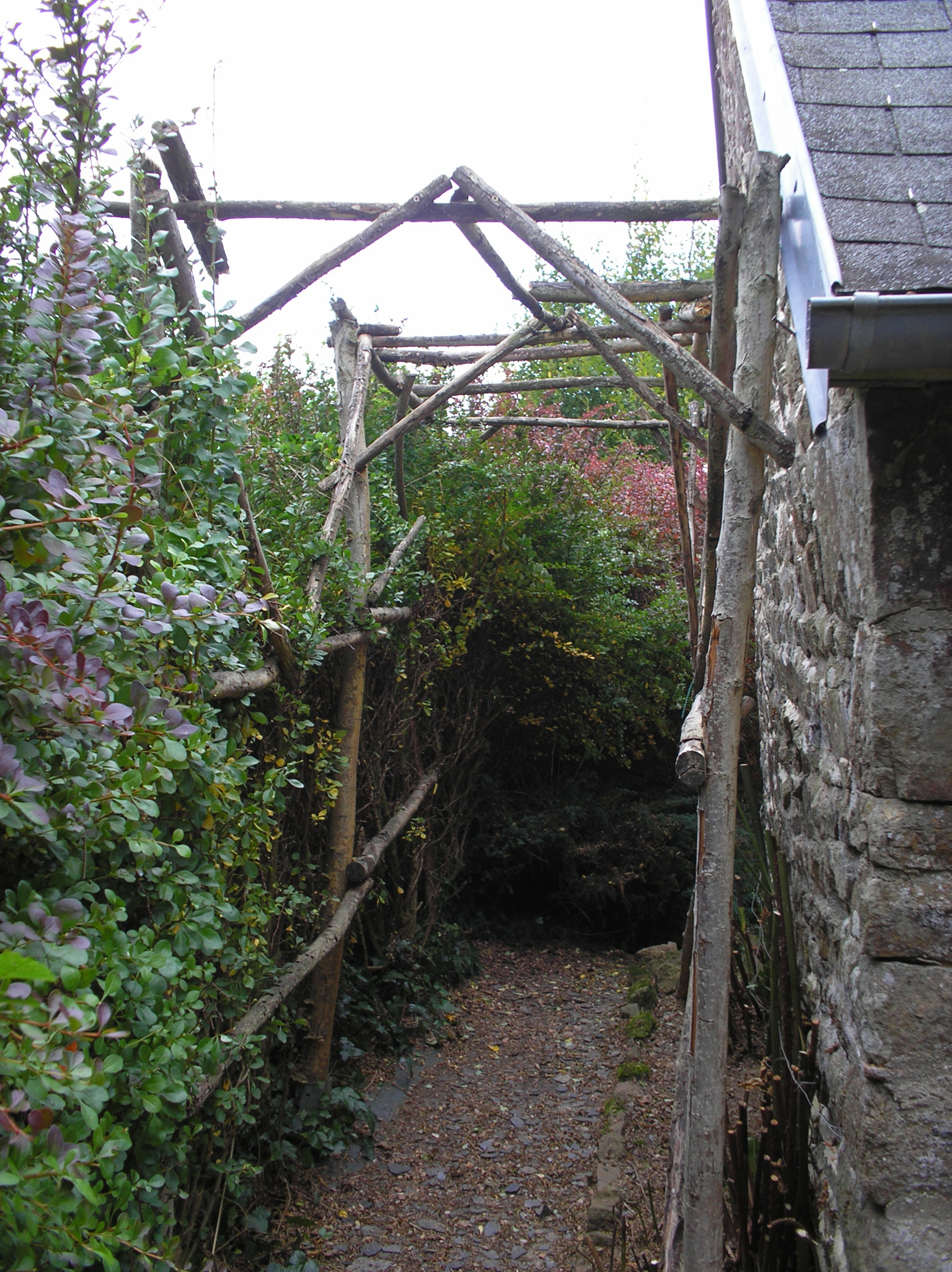 Arbour after serious cutting back