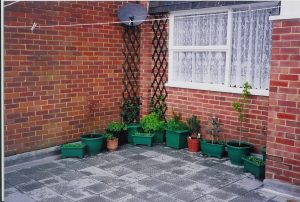our first garden - Rustington