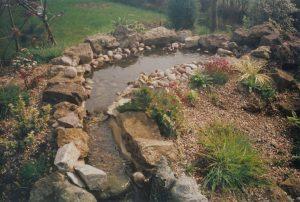 Saving the pond - the rill