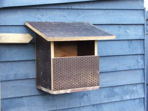 Robwatch The robin's new nest box