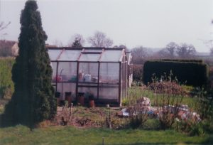 The original greenhouse