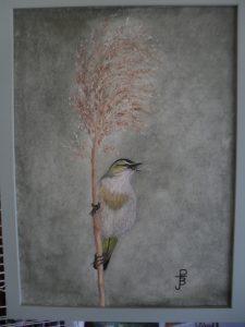 BirdOnGrass